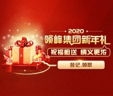 2020领峰集团新年礼,开放登记!