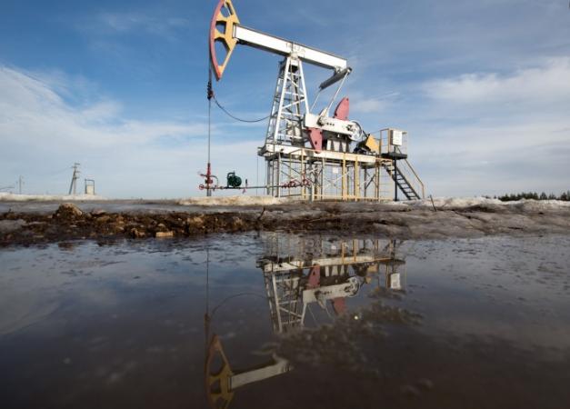不会看国际原油行情怎么办?