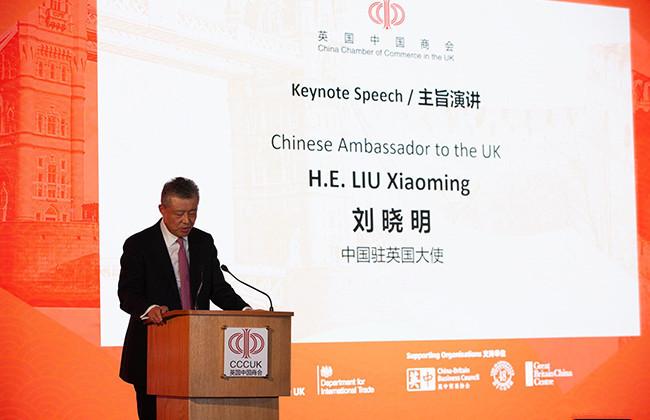 刘晓明先生为本次大会发表主旨演讲